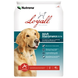 Nutrena® Loyall Adult Maintenance 21/14 Dog Food