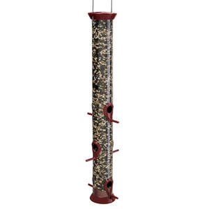 Droll Yankees New Generation Sunflower/Mixed Seed Feeder