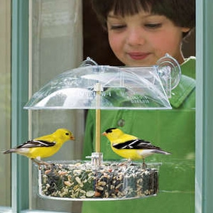 Droll Yankees The Winner Multi-Purpose Window Feeder