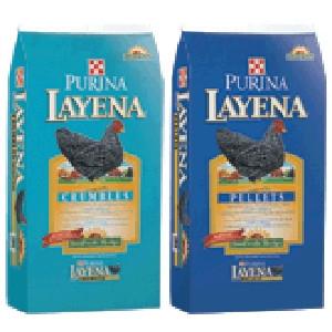 Layena® SunFresh® Recipe