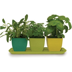 Rush Creek Designs Herb Garden Set