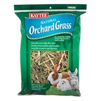 Kaytee Orchard Grass