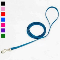 "Coastal Style 306 3/8"" x 6' Nylon Web Training Lead Red"