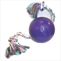 Jolly Pets Romp-N-Roll Purple 8""