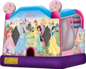 Disney Princess Combo
