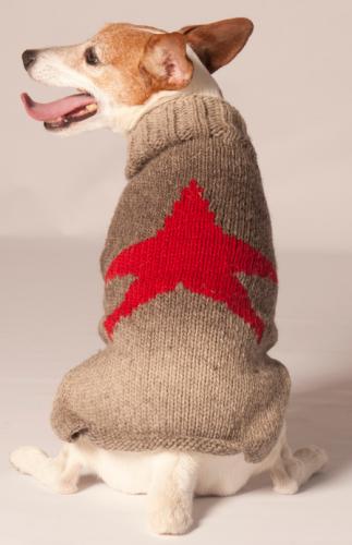 Chilly Dog Rock Star Dog Sweater