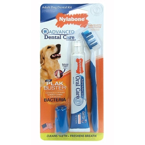 Nylabone Advanced Oral Care Dental Kit