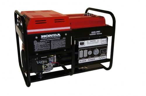 Generator, 12,000 watt gas