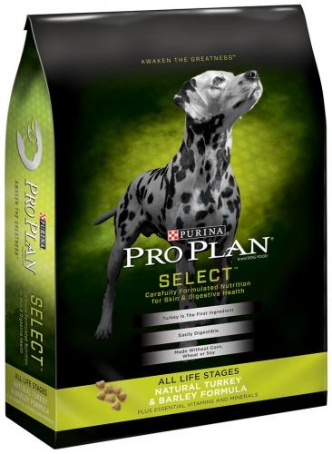 Pro Plan Select Adult Dog Turkey/Barley 5/6 lb.