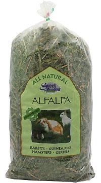Sweet Meadow Alfalfa