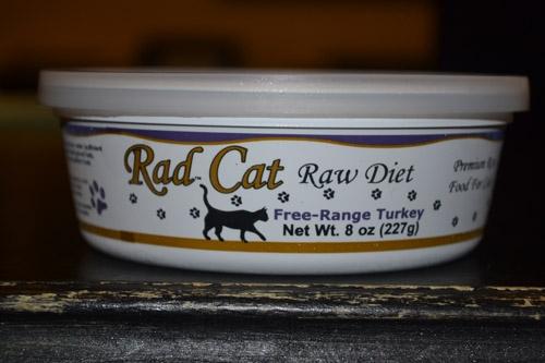 Rad Cat Pet Supply Center Sarasota Fl