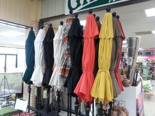 Umbrella Variety