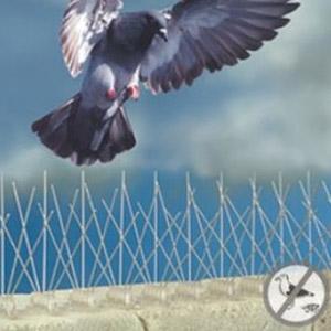 Bird-B-Gone® Stainless Steel Bird Control Spikes