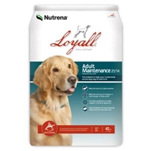 Loyall Pet Food Adult Maintenance Formula 21/14