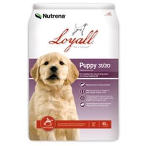 Loyall Pet Food Puppy Formula 31/20
