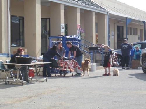 Dog Dippin Days 2014 at Harrison