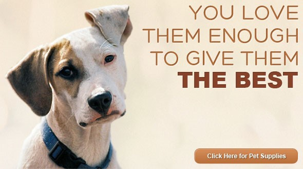 Dog ad