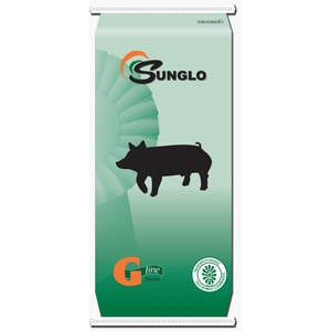 Sunglo® G-Line Gilt Developer