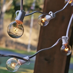 String Lights, 25 ft, White or Black