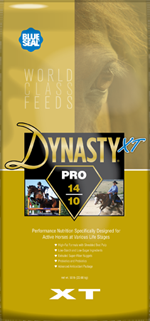 Dynasty XT Pro 14/10