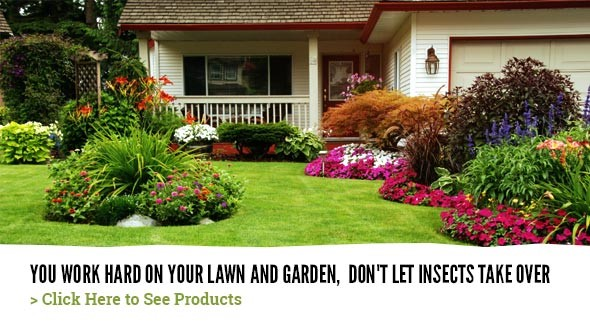 Lawn and Garden - Avoid Insects
