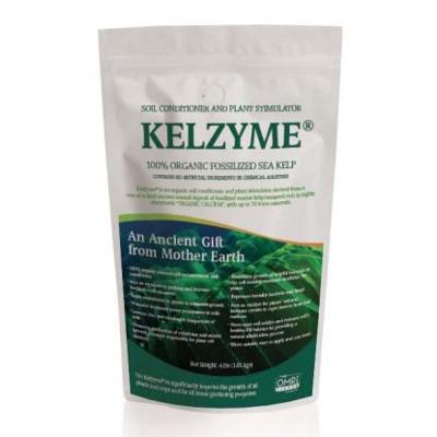 Kelzyme 100% Organic Fossilized Sea Kelp, 8.8oz.