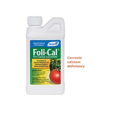 Foil-Cal, pt.