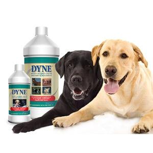 Dyne® High Calorie Liquid Dietary Supplement