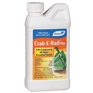 Monterey Crab E Rad Plus