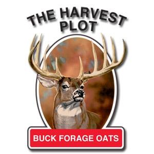 Buck Forage Oats