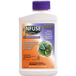Infuse Concentrate