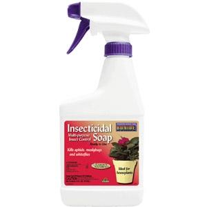 Insecticidal Soap RTU