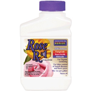 Rose Rx 3 in 1 Concentrate