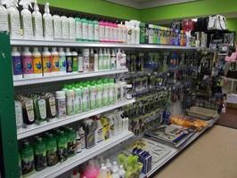 Around the Store
