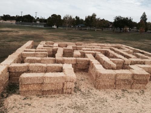 450 Bale Maze