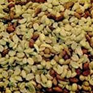Alpine Ingredients Shelled Peanuts