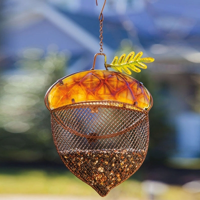 Westfield feed and easthampton feed harvest shimmer for Acorn feeder