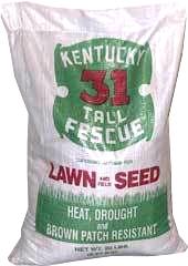 Fescue Kentucky 31 50lb