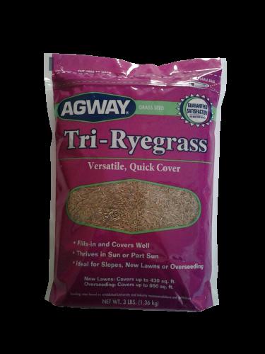 Agway Tri-ryegrass 3lb