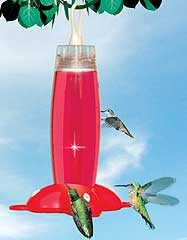 Rose Hummingbird Feeder