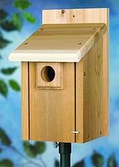 Stokes Select Deluxe Bluebird House Cedar