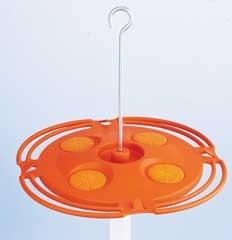 Oriole Plastic Feeder 16oz