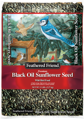 FREE 5Lb Black Oil w/$15+ Seed Feeder Purchase