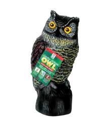 Garden Defense Owl