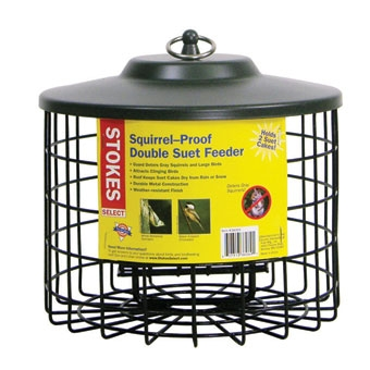 Stokes Select Squirrel-proof Double Suet Bird Feeder