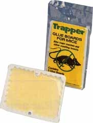 Mouse Sized Glue Boards