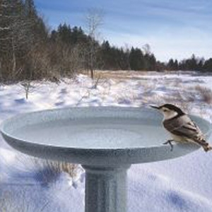 Miller Manufacturing KozyBird Spa Heated Bird Bath With Pedestal