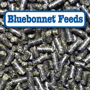 Bluebonnet® Intensify Total Advantage Pelleted Horse Feed