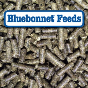 Bluebonnet® Equilene Senior Select Pelleted Horse Feed
