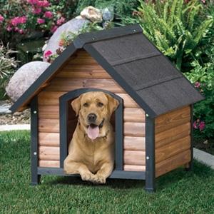 Precision Wwoodstone Dog House